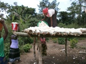 4. l. Mmes Hélène - Jeannes déposent le Manioc pour le Séchage